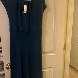 GORGEOUS blue wool Banana Republic dress sz small